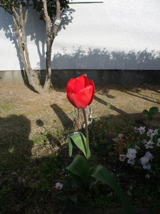 2010_0403AR.JPG
